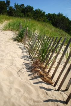 This fence doesn't stand a chance against the dune.
